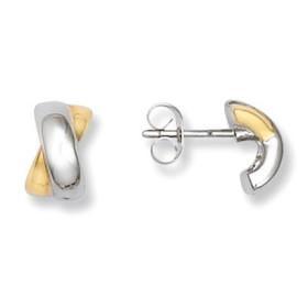 Boucles d'oreilles en acier bicolore