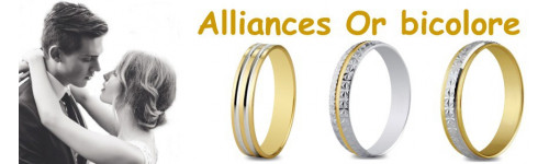 Alliances en or bicolore